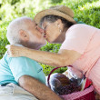 Picnic Seniors Smooch — Stock Photo