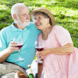 Picnic Seniors with Wine — Stock Photo #6816976