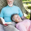 Relaxing Read — Stock Photo #6816995