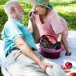 Romatic Senior Picnic - Grapes — Stock Photo