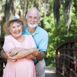 Romantic Seniors on Bridge — Stock Photo