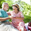 Romantic Seniors on a Picnic — Stock Photo