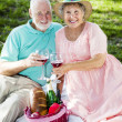 Stock Photo: Seniors Picnic Toast