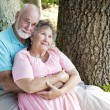 Stock Photo: Senior Couple - Nostalgia