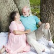 Senior Couple - Romantic Date — Stock Photo