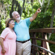 Senior Couple Sightseeing — Stock Photo #6817058