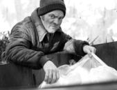 Homeless Man - Roots In Dumpster B&W — Stock Photo