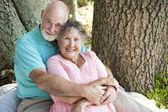 Loving Seniors Embrace — Stock Photo