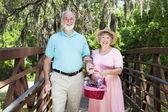 Picknick senioren in het park — Stockfoto