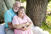 Senior Couple - Nostalgia — Stock Photo