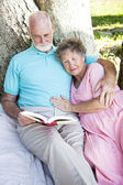 Senior Couple Reading Together Outdoors — Stock Photo