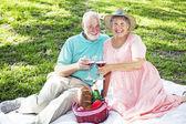 Seniors on Picnic Blanket — Stock Photo