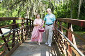 Vakantie senioren op picknick — Stockfoto