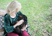 Cuddly Dachshund in the Park — Stock Photo