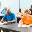 Stock Photo: Job Training - Testing