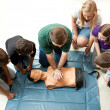 Group of Teens Take CPR Class - Stock Photo