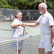 Senior Tennis Players Handshake — Stock Photo