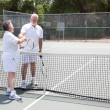 Tennis Seniors Handshake with Copyspace — Stock Photo