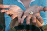 Gardeners Hands — Stock Photo