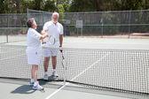 Tennis Seniors Handshake with Copyspace — Stock Photo