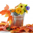 Fall composition - Stock Photo
