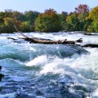 Mountain river rapids in autumn — Photo