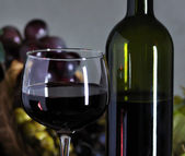 Red wine composition — Stock Photo