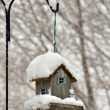 Stock Photo: Bird feeder in winter park