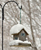 Bird feeder in the winter park — Stock Photo