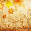 Stock Photo: Grunge abstract fall background