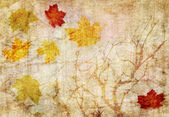 Grunge abstract fall background — Stock Photo