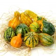 Gourds — Stock Photo #6923591