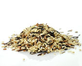 Wild rice blend — Stock Photo