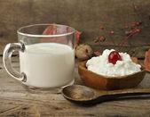 牛奶和奶酪 — 图库照片