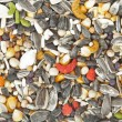 Stock Photo: Bird food background