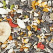 Bird food background — Stock Photo #7221974