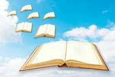 Bücher fliegen zum himmel — Stockfoto