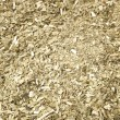 Stock Photo: Closeup of yerbmate for background