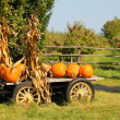 Pumpkins in Wagon — Stock Photo