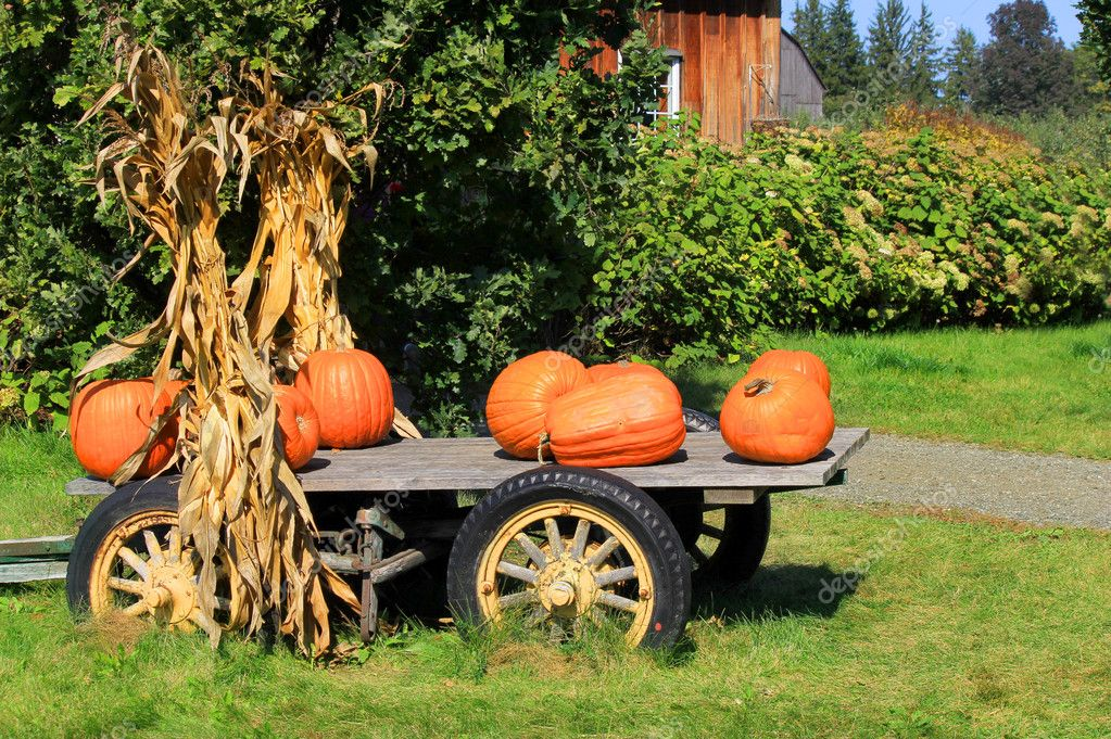 Pumpkins in Wagon for Autumn Harvest — Stock Photo #6936224