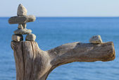 Stone man on dead tree against lake Ontario — Stock Photo