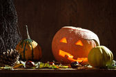 Pumpkins with candle and leafs — Stock Photo