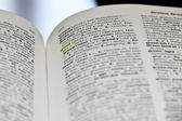 Açgözlülük sözlük — Stok fotoğraf
