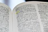 Gier im wörterbuch — Stockfoto