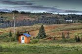 Small shed with power pole in rural Alaska in fall — Stock Photo