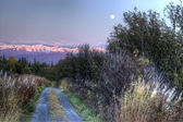 Moon rising over dirt road — Stockfoto