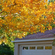 garage with fall colors — Stock Photo