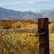 Boundaries of an Eastern Sierra Ranch — Stock Photo