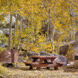 Campsite in fall — Stock Photo