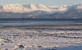Ice in the bay at dusk with tanker — Stock Photo
